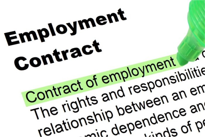 Employment Contracts  Severance Packages